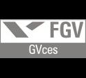 Fundação Getúlio Vargas - Centro de Estudos em Sustentabilidade