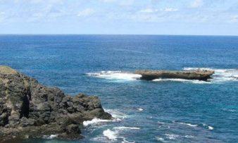 Parque Nacional Marinho de Fernando de Noronha é apoiado pelo Adoção de Parques