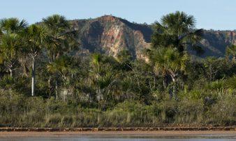 Parque-Nacional-Grande-Sertão-Veredas-apoiado-pelo-acordo-bilateral-TFCA