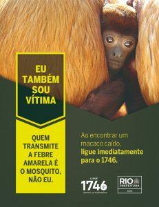 Banner da campanha em defesa dos macacos. Foto com macaco e um texto: Eu também sou vítima.