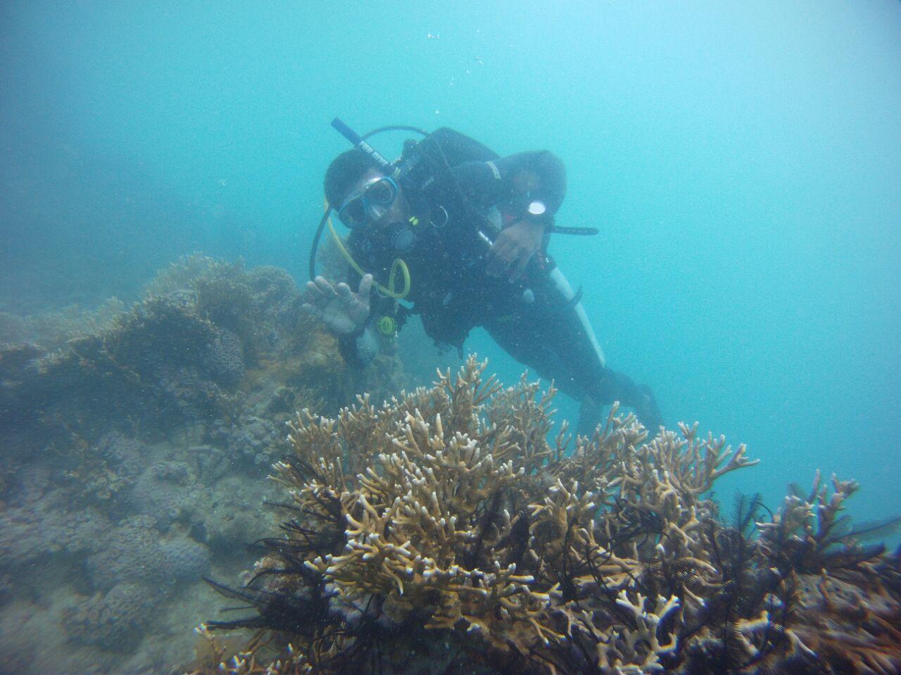 Mário Filho, extrativista na Resex Corumbau e aluno do curso de mergulho. Foto de Fábio Negrão